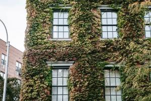 Las fachadas, elemento importante para una casa autosuficiente.