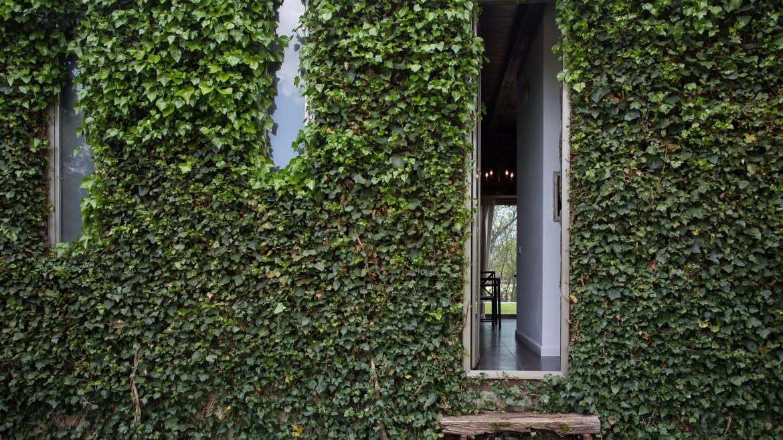 """Los 3 proyectos sostenibles de """"arquitectura verde"""" que te inspirarán"""